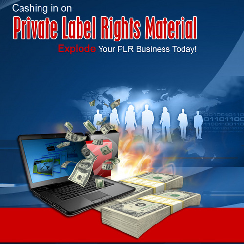 Product picture PLR for Cash and Profits